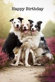 Happy Birthday Dog Meme - 64 dog birthday wishes