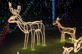 Bright Christmas Decorations Reindeer Christmas Decorations Bright Light Editorial Image