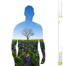 Bluebonnet Flowers - human shape and nature protecting environment bluebonnet field