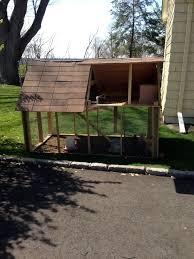 project for urban backyard chickens backyard chickens
