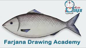 how to draw a fish step by step very easy youtube