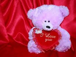 teddy bear pic collection for free download