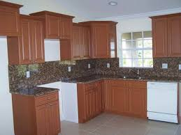 Light Brown Kitchen Cabinets Kitchen Exquisite Photos Of New At Interior 2017 Light Brown