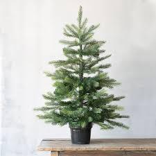 faux grand fir tree terrain