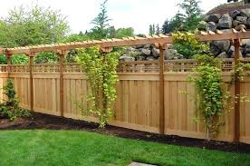 Backyard Fence Decorating Ideas Backyard Fence Ideas Great Fenced Backyard Landscaping Ideas