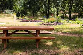 how to build a picnic table and benches building picnic table