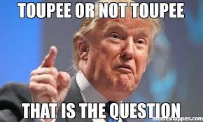 Question Meme - toupee or not toupee that is the question meme donald trump