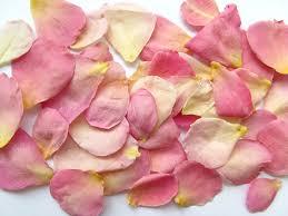 real petals real flower petals petals petal confetti biodegradable