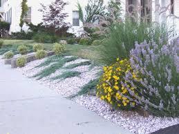 White Marble Rocks For Landscaping by Shrubs Planted On A Slope Ground Hugging U0027blue Rug U0027 Juniper