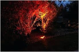 Colored Landscape Lighting Colored Lenses For Landscape Lights Lot 6 Floodlight Landscape