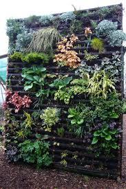 22 best vertical gardens images on pinterest vertical gardens