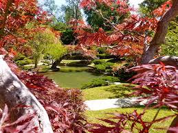 Botanical Gardens Huntington The Huntington Library Collections Botanical Gardens San