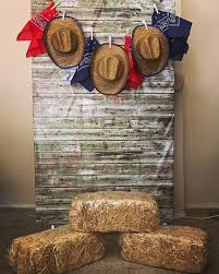 Cowboy Decorations Diy Backdrop Out Of A Clothes Rack And Cls Western
