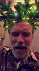 100 christmas movie arnold schwarzenegger see the cast of