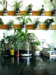wall herb garden indoor wall herb garden pallet herb garden indoor
