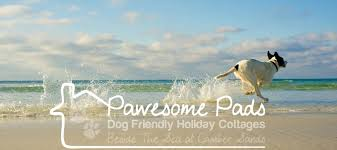 Cottages That Allow Dogs by Dog Friendly Camber Sands Holiday Cottages