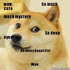 So Doge Meme - doge wow so much cute much mystery so deep eyes so many
