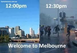 Sydney Meme - melbourne meme the little traveller