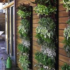 vertical herb garden i really want one of these in my new home