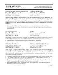 federal government resume format jospar