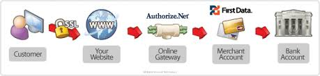Learn How Ecommerce Works Learn With Web Instinct How Ecommerce Works