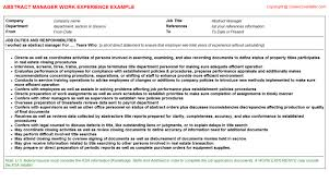 abstract manager cv work experience