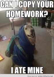 Funny School Meme - can i copy your homework i ate mine funny school meme image