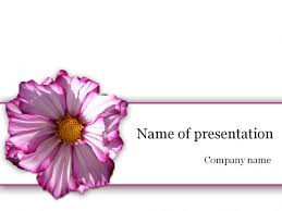 free awesome powerpoint templates spring 2013