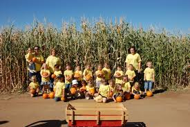 free halloween farm background pumpkin patches throughout san diego fall 2015