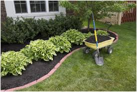 awesome amazing easy care landscaping ideas have simple garden