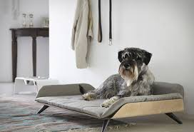 Modern Dog Furniture by Letto Daybed For Modern Dog Bed With Scandinavian Look Home