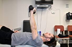 bench press muscles worked fitnetik