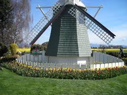 Skagit Valley Tulip Festival Bloom Map Explore Skagit Valley Tulip Festival With Kids