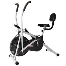 cdr bike price in india deemark bodygym air bike stamina with back support buy online at