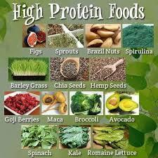 protein sources in vegan and vegetarian diet u2013 infographics