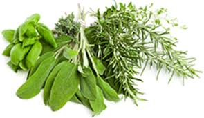 herb cooking with herbs better nutrition magazine supplements