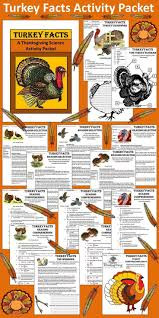 turkey facts this colorful thanksgiving turkey facts activity