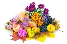 fruits flowers autumn still composition october european plants fruits
