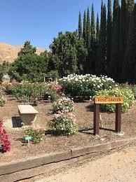 Ucr Botanical Gardens How The Ucr Botanic Gardens In Riverside To Increase