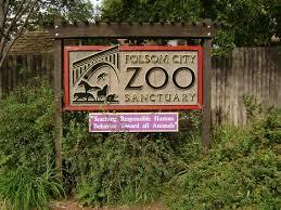 folsom zoo christmas lights 2017 folsom zoo sanctuary california park recreation society