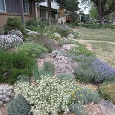Rock Gardening Rock Gardening In The Rockies Denver Botanic Gardens