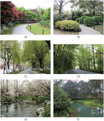 assessing the visual aesthetic quality of vegetation landscape in