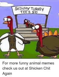 Skinny Meme - skinny turkey tee s 10 for more funny animal memes check us out at