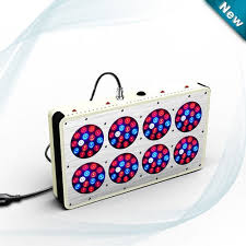 apollo power and light apollo 8 led grow light for hydroponic tomatoes nz