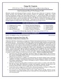 Best Executive Resume Builder by Cfo Resume Samples