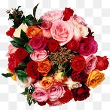 rose flower wedding invitation pink pink rose png download