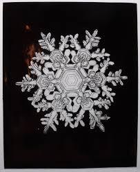snowflake wilson bentley wilson bentley lives creative camerawork