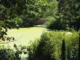 mn landscape arboretum gardens of eatin