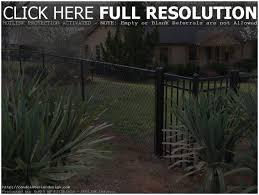 Backyard Fence Decorating Ideas by Backyards Amazing Dog Friendly Backyard Backyard Pictures Small