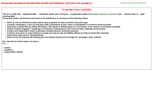 manager business promotion work experience certificate